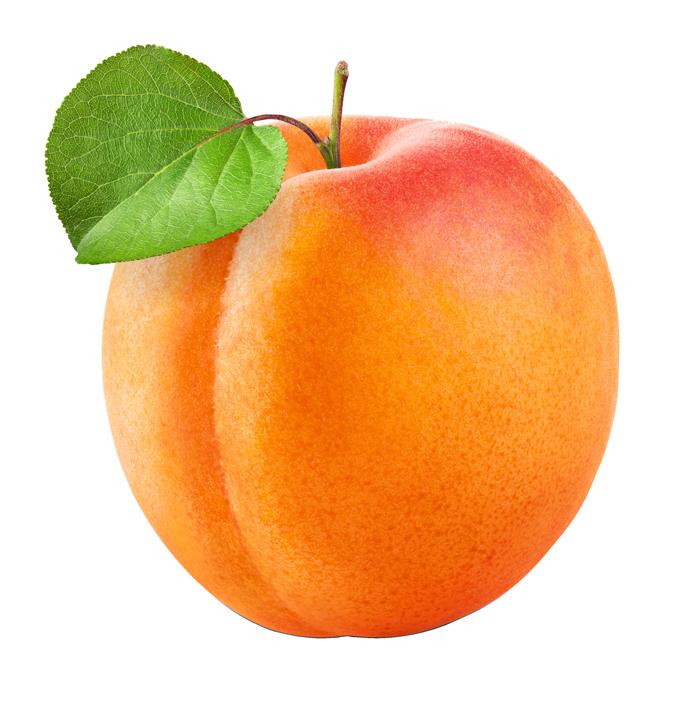 Abricot Fruits Vaud Gen 232 Ve